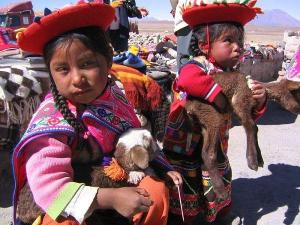 children_selling_lambs_peru