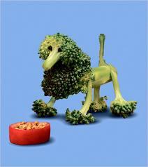 brocolli poodle kidsjpg