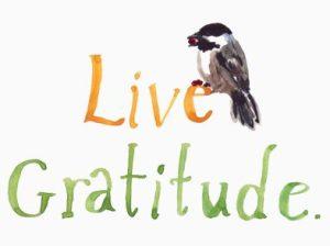 live gratitude