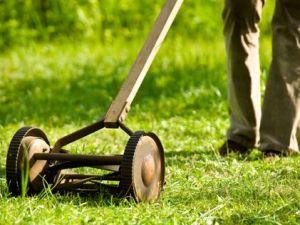 push lawnmovwers