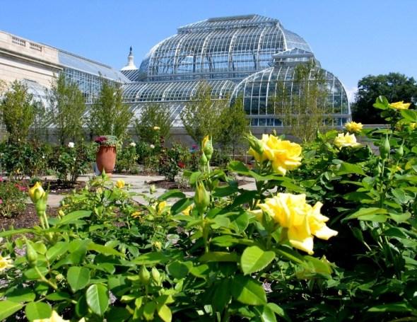 national botanicgarden-washingtondc9