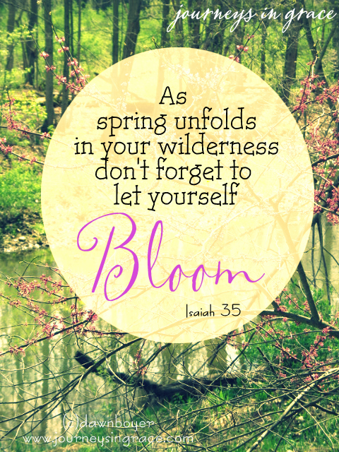 bloom-in-your-spring-season-Isaiah-35