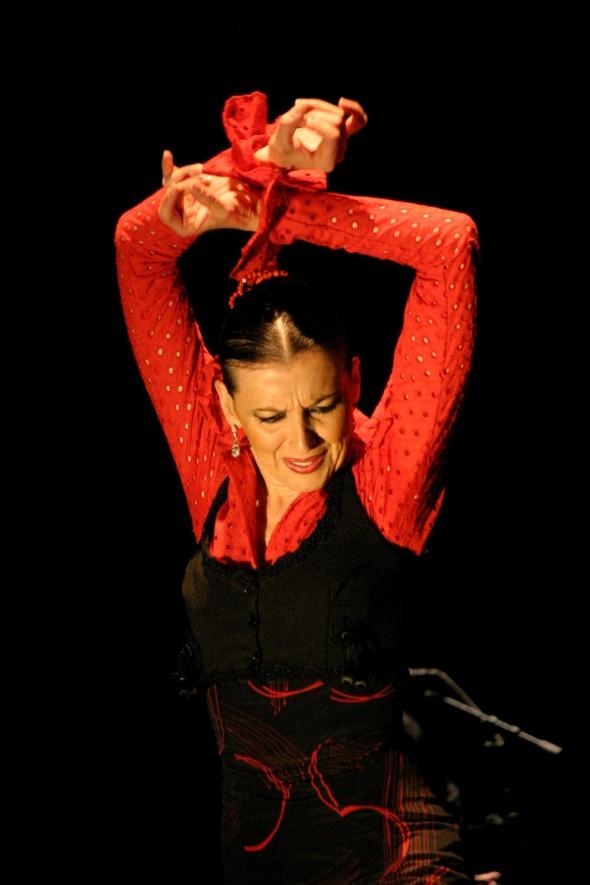 flamenco santa fe
