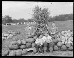 vintage harvest